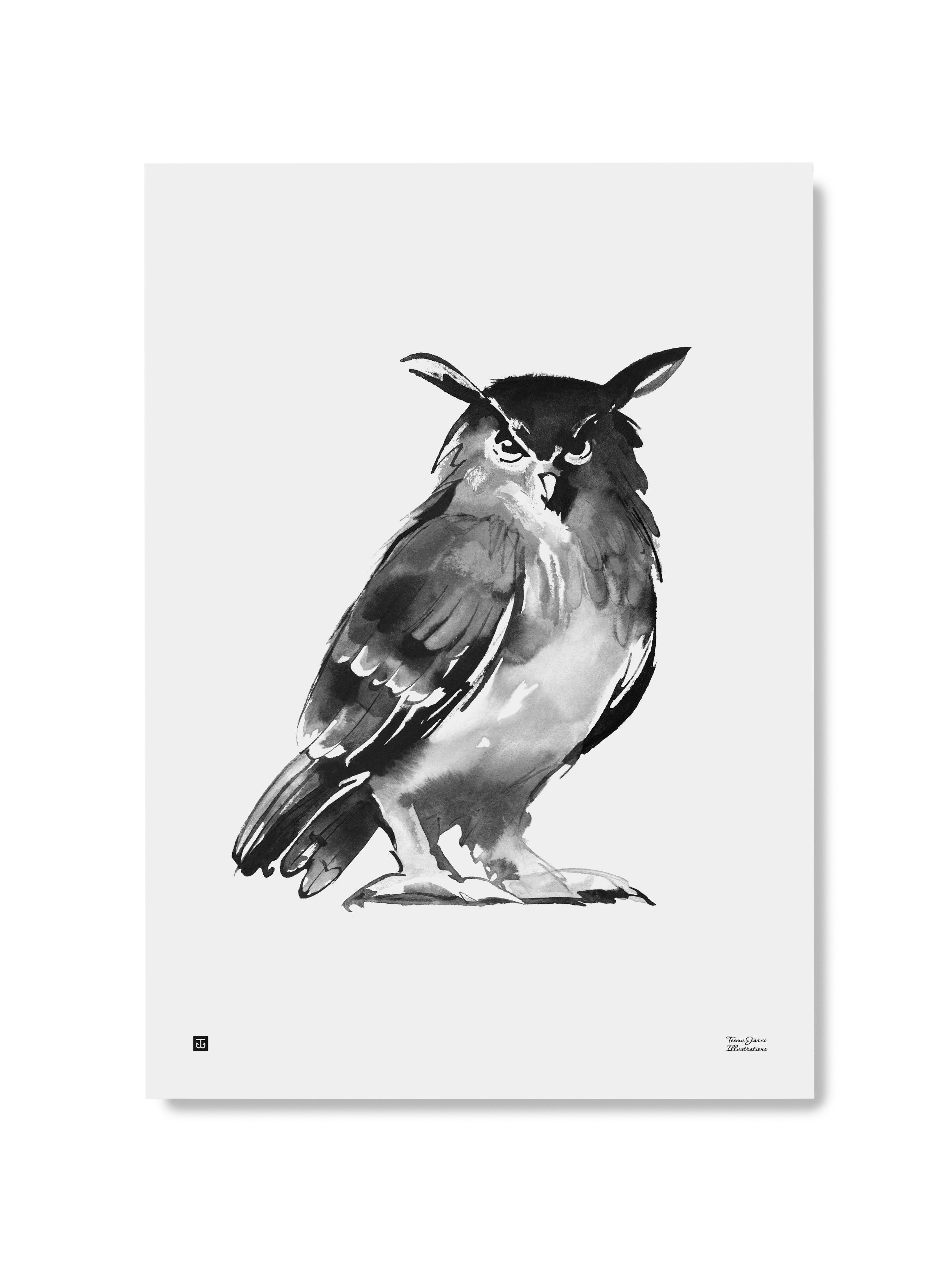 Teemu Järven pöllö